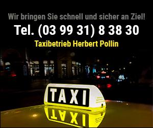 Herbert Pollin Taxibetireb